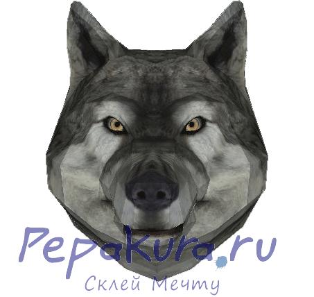 модель-головы-волка